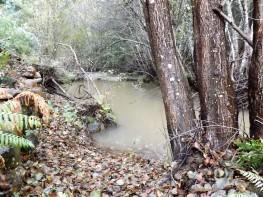 Neste local da ribeira a água esta calma contrastando com a foto ao lado.