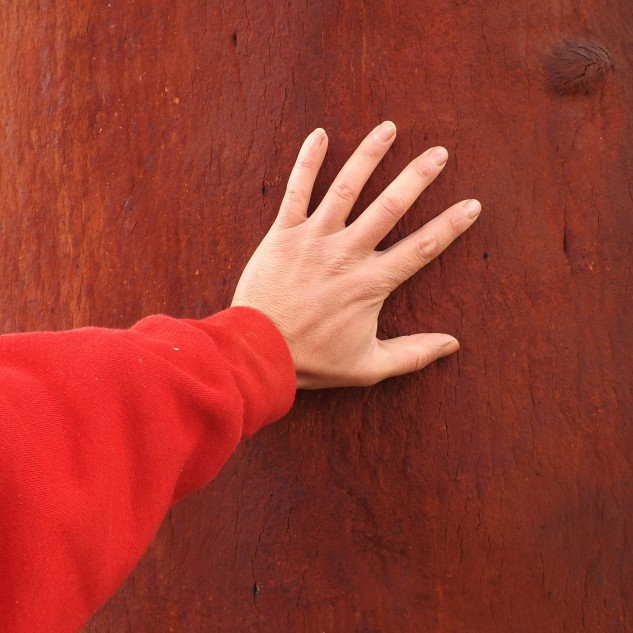 A casca do sobreiro depois de descortiçado acaba por ganhar uma cor avermelhada.