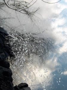 Por entre a beleza dos reflexos, escondem-se vestígios de destruição.