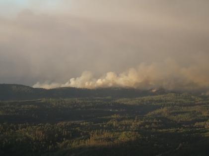 Incêndio da serra da Capela