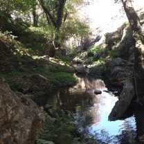Uma zona fresca com muita biodiversidade.