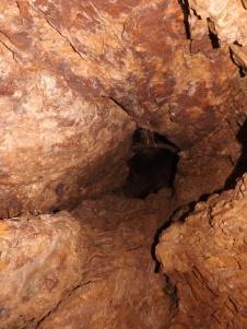 Esta cavidade erguia-se para cima, e daqui também saíram morcegos...