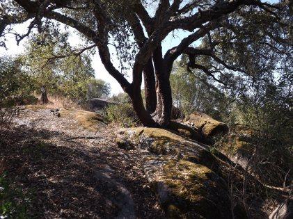 Adoro as paisagens em que a rocha predominante é o granito, pois proporcionam estas bonitas paisagens.
