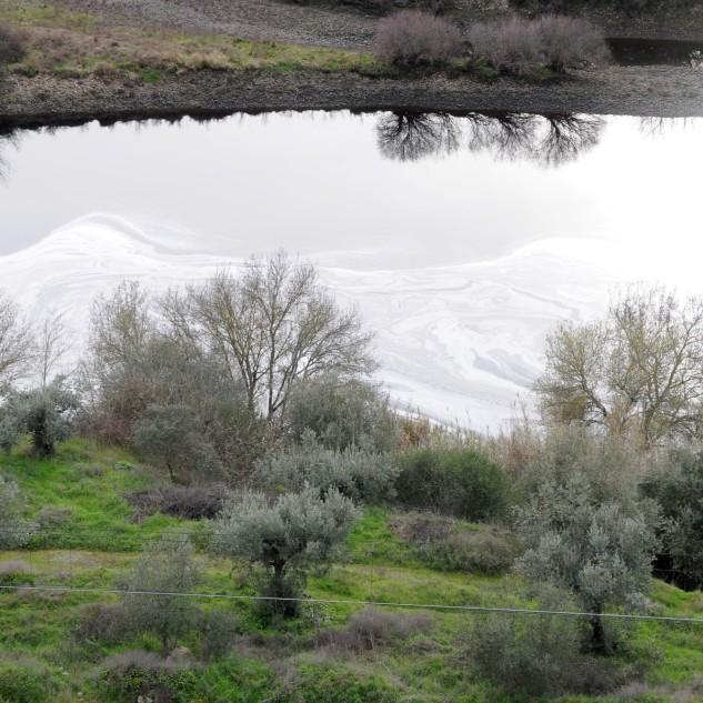 Hoje pela tarde, decidi dar uma volta junto ao rio Tejo, na esperança de encontrar um rio menos poluído, no entanto para meu desencanto depressa reparei num manto branco, não era neve pois essa a cair só na Serra da Estrela.