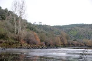 Lá ao longe vejo o Arlindo, um homem que defende o que é de todos, o nosso rio Tejo.