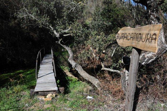 Caminho para a buraca da Moura em Chão-de-Lopes-Pequeno.