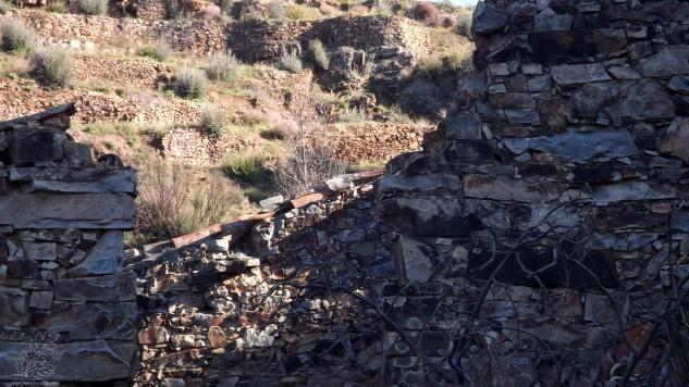 Corga - Aldeia do Castelo em Mação.