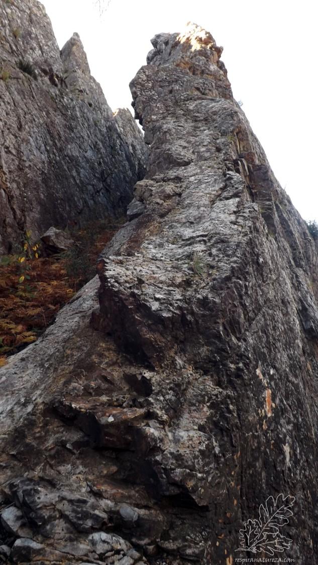 O penedo do Aivado é um maciço quartzítico que aparece na paisagem de forma invulgar.