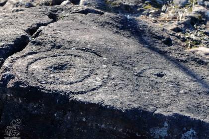 Gravura rupestre em Cobragança - Caratão - Mação