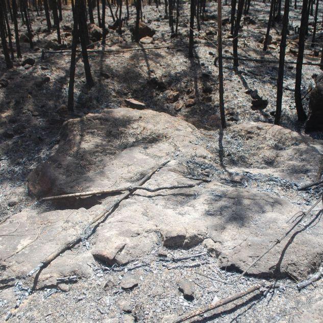 29 de Julho de 2017 após o grande incêndio.