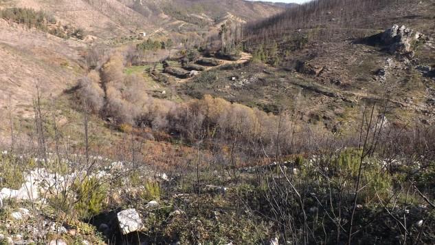 No fundo do vale, passa a ribeira do Aziral.