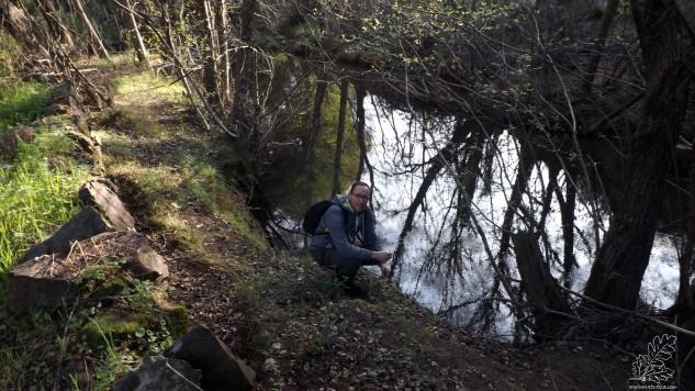 Em certos locais a água ganha calmia reflectindo perfeitamente o que se encontra à sua volta.