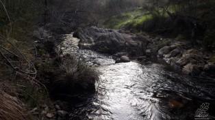 Na ribeira, água corre cintilante a caminho do Tejo.