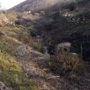 Com as margens da ribeira neste estado, vai ser fácil caminhar até mais à frente.