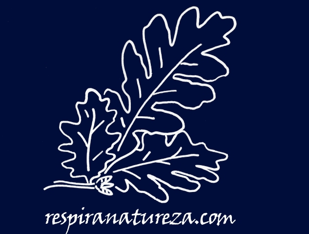 respiranatureza.com