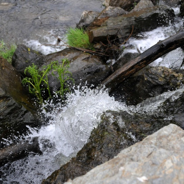 Por estes dias a água faz-se ouvir nesta pequena cascata.