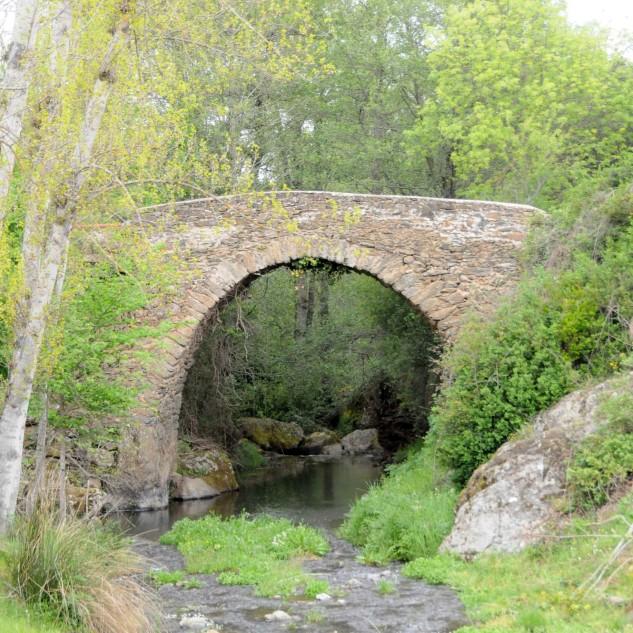 Como podemos observar esta ponte foi construída num local onde as margens da ribeira é mais elevada.