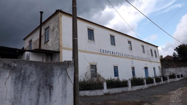 Cooperativa Agrícola das Matas, fundada a 21 de Abril de 1922, para vos falar um pouco da sua história. Esta é a cooperativa agrícola mais antiga de Portugal.