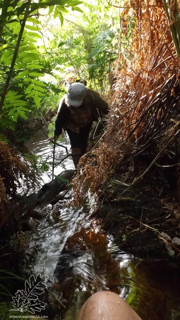 Apesar de ser manhã sabe bem ter os pés molhados, ainda mais sabendo que a água provem de nascentes não muito distantes… nesta ribeira corre água todo o ano.