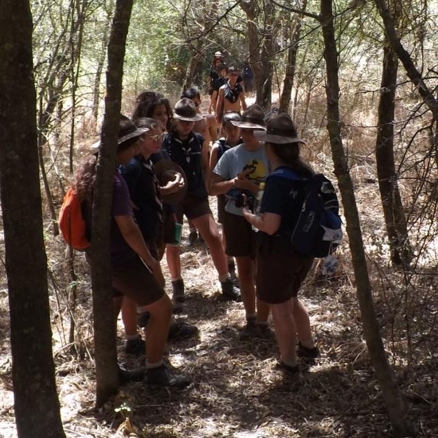 A certa altura começamos a entrar num bosque ripícola.
