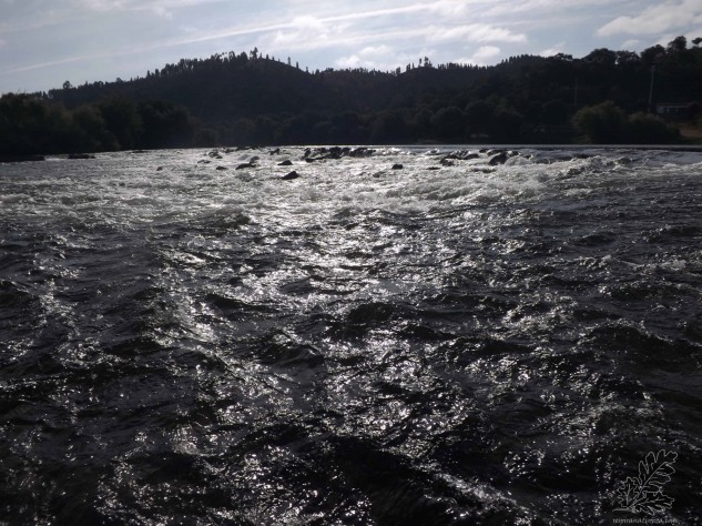 Ali existe um desnível de água de cerca de 2 a 3 metros, esta diferença proporciona uma zona com mais corrente e agitada. O barulho da água convida-nos a uma primeira experiência neste bonito rio.
