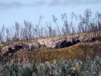 """Mais perto... fiquei a saber que aquelas zonas rochosas tem o nome de """"escamado""""...."""