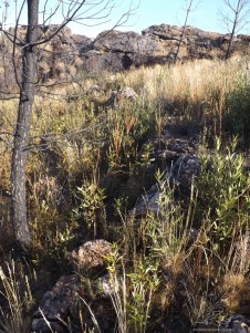 Parte interior da formação rochosa.